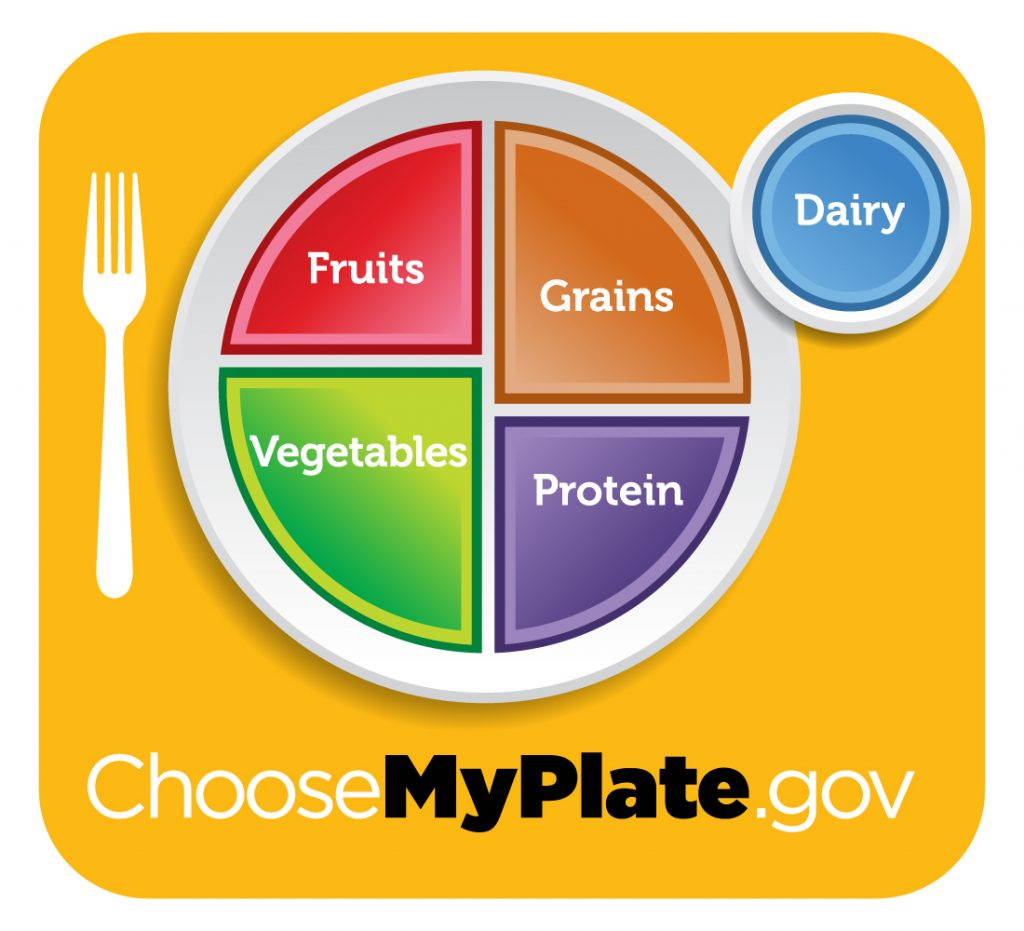 my plate: fruits, vegetables, grains, protein, dairy